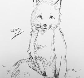 renard-5min